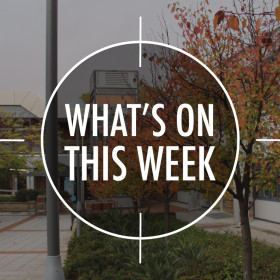 What's On 8 – 12 June