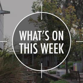 What's On 2 – 6 November
