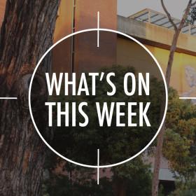 What's On 9 – 13 November