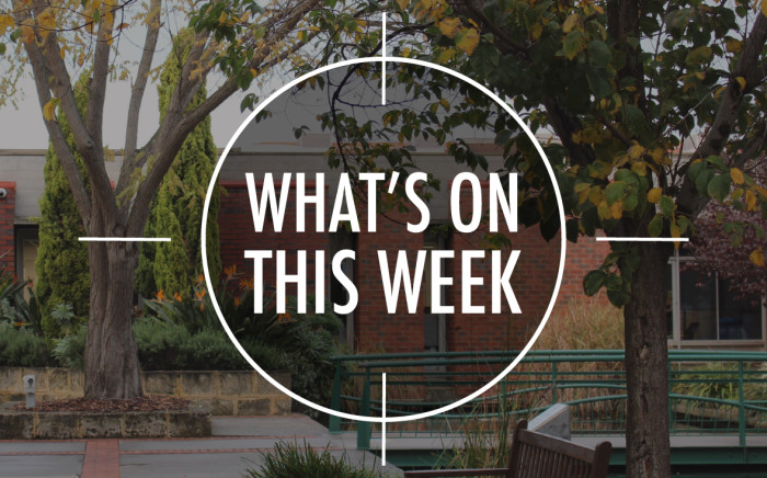 What's On 16 – 27 November