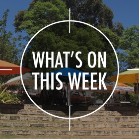 What's On 14 – 18 December